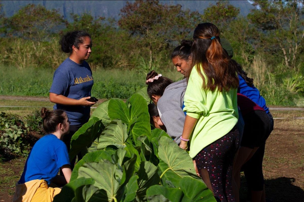 The USDA Awards Two Charter Schools Farm to School Grants
